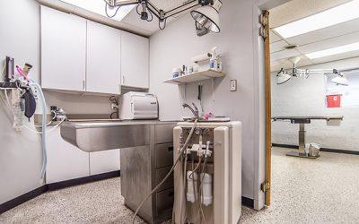 West_Hills_Animal_Hospital-7821